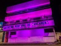 Março Lilás, A Câmara Municipal de Barcarena apoia essa causa