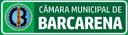 04.08.2020 - AO VIVO 15ª SESSÃO ORDINÁRIA